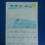 """I learned that dolphins have dorsal fins and they can stay in the water for two hours."""