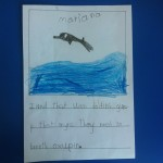 """I learned that when dolphins jump, that many they need to breathe oxygen."""