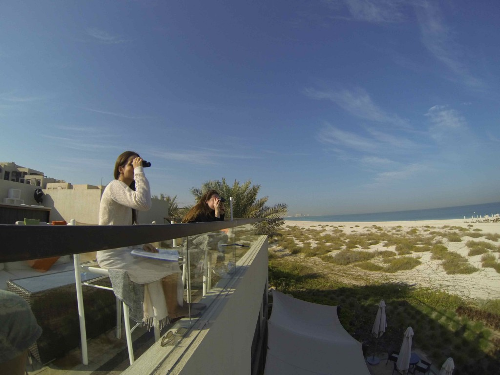 Saadiyat_Survey 2016_Jan_DCIM100GOPRO